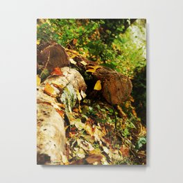 Soothing Brook Metal Print