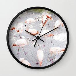 Pretty in Pink  |  Flamboyance of Flamingos Wall Clock