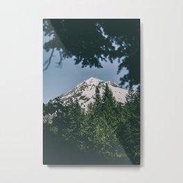 Mount Hood IX Metal Print