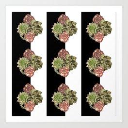 When Floral Meets Succulent Art Print