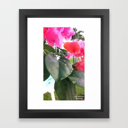 Jammin Jamaica  Framed Art Print