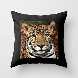 Belizean Jaguar Photograph Throw Pillow