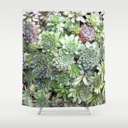 Desert Flower I Shower Curtain