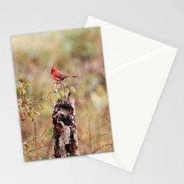 Cardinal Landscape Stationery Cards