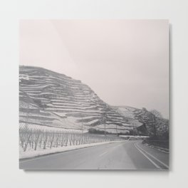 Vineyards In Winter Metal Print