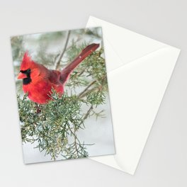 Cocky Cardinal Stationery Cards