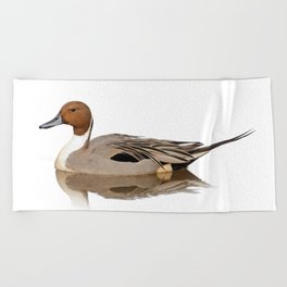 Reflections of a Northern Pintail Duck Beach Towel