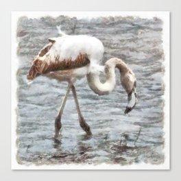 Knee Deep Flamingo Watercolor Canvas Print