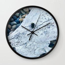 Dead Bee and Skull Wall Clock