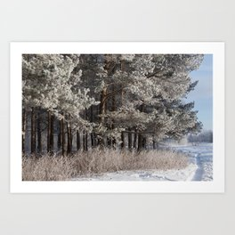 Snowy Path by Winter Woods Art Print