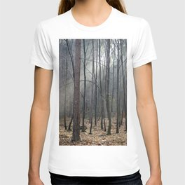 Magical winter light T-shirt