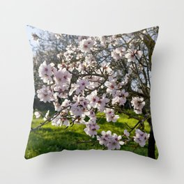 Almond trees in flower in Portugal, the Algarve Throw Pillow