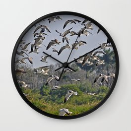 The Birds of Cutler Bay Wetlands Wall Clock