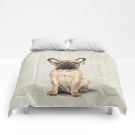 Mr French Bulldog Comforters