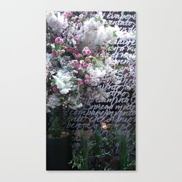 A hand written message with petals Canvas Print