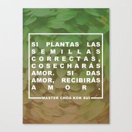 Cosecharás amor Canvas Print