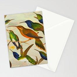 Translate Album de aves amazonicas - Emil August Göldi - 1900 Colorful Hummingbirds Stationery Cards