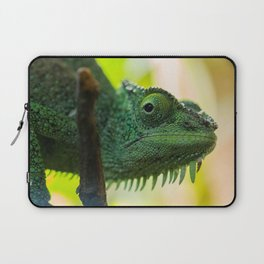 Up Close and Personal with a Chameleon Laptop Sleeve