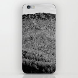 Winter Mountains iPhone Skin