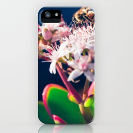 Crassula ovata Jade Flowers and Honey Bee Kula Maui Hawaii iPhone Case