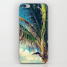 Breezy Beach Palm iPhone & iPod Skin