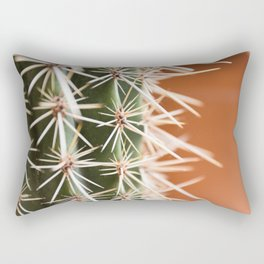 Cactus pattern -- Green cactus against a terra cotta backdrop --  Rectangular Pillow