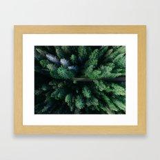 Woods #sky Framed Art Print