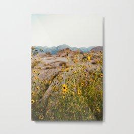 Wild Desert Flowers Metal Print