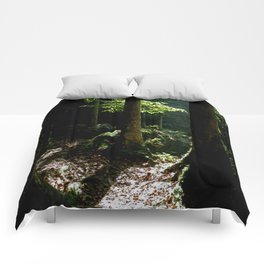 Light in tropical rainforest Comforters