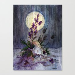 Wolfsbane Canvas Print