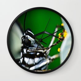The messy work of a Madam Butterfly Wall Clock