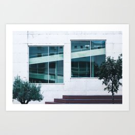 Find The Reflection Art Print
