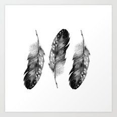Three Feathers Black And White Art Print