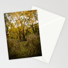 Walk Through Fall Stationery Cards