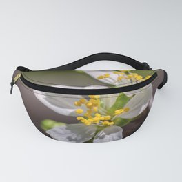 Plum Blossoms II Fanny Pack