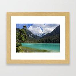 Joffre colours Framed Art Print