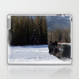 """Banff Wolf in Winter with Mt Cascade"" Laptop & iPad Skin"