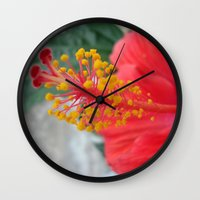 hibiscus Wall Clocks featuring Hibiscus by BACK to THE ROOTS