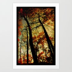 Fall Sunset Trees Art Print