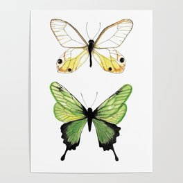 The Two Butterflies Poster