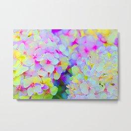 Pink and Yellow Hydrangeas Metal Print