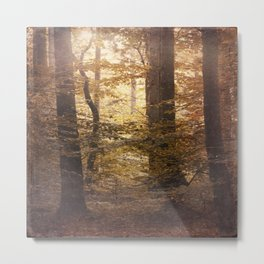 Autumn Came, With Wind & Gold. Metal Print