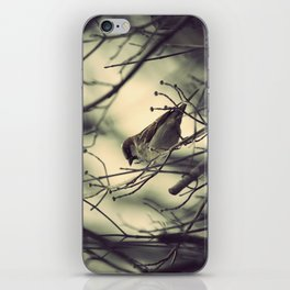 half a bird in the hand is worth... iPhone Skin