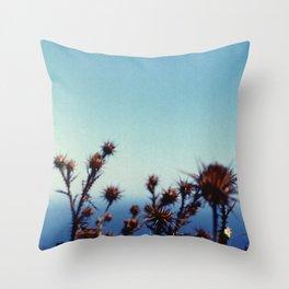 Sun-Bleached Blossom Throw Pillow
