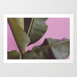 Tropical, Leaf, Plant, Modern, Wall Art Art Print