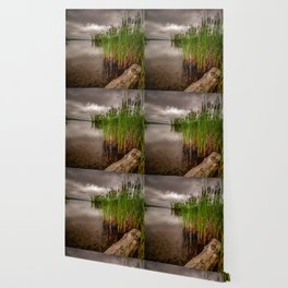 Driftwood And Cattails Wallpaper