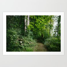 Relaxing in the Woods // Ohio Art Print