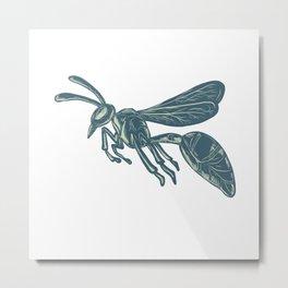 Yellowjacket Flying Scratchboard Metal Print