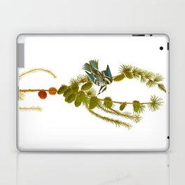 Black & White Creeper Bird Laptop & iPad Skin