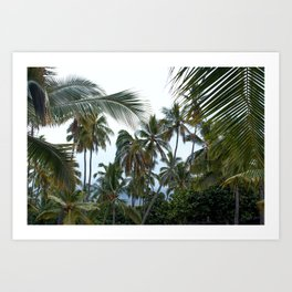 Place of Refuge Palm Trees Art Print